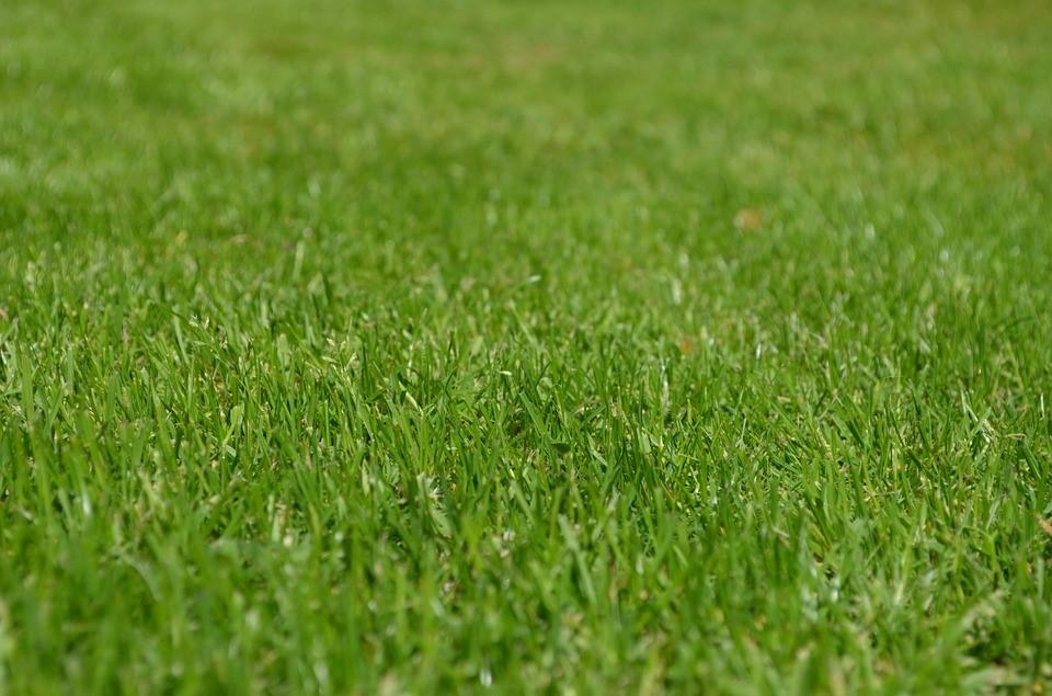 Decoração-festa-grama-artificial