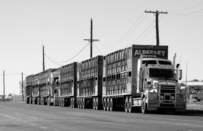 caminhao-de mudancas-em-planalto-paulista-transporte-carga